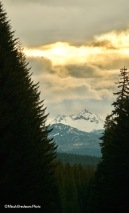 Three Fingered Jack on the way to work