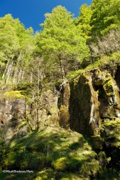 Opal Creek Wilderness Area