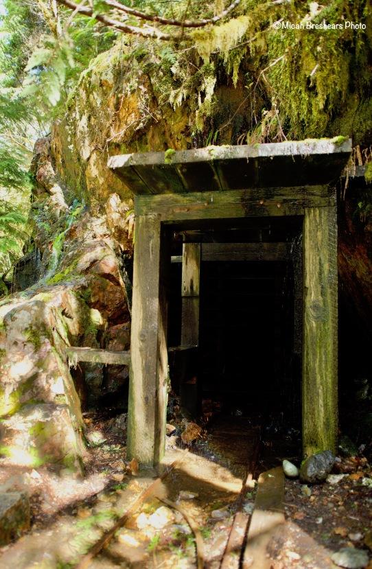 Old mining shaft in Opal Creek Wilderness
